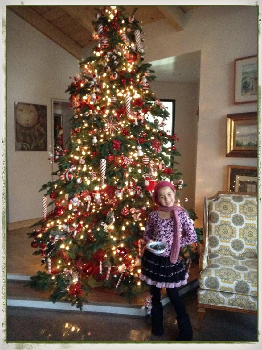 Ideas para decorar el rbol de navidad mi rbol en el - Como poner el arbol de navidad ...