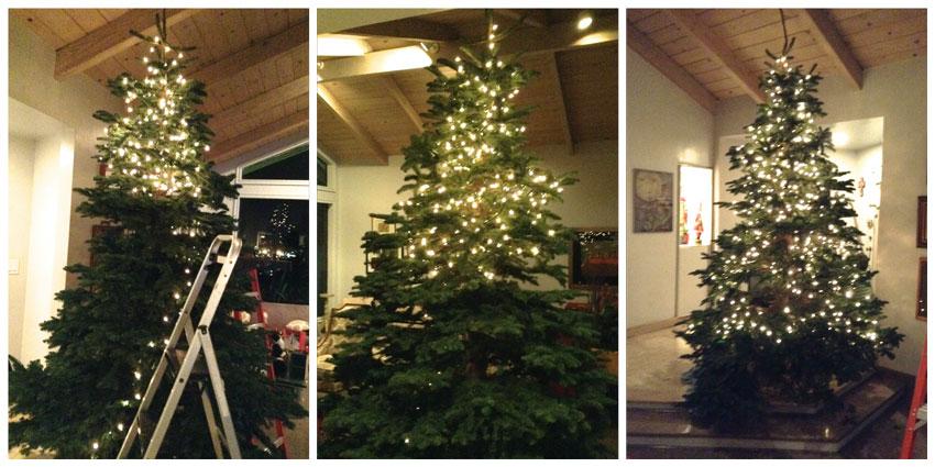Navidad-Christmas-Arbol-Navideño-poniendo-los-focos