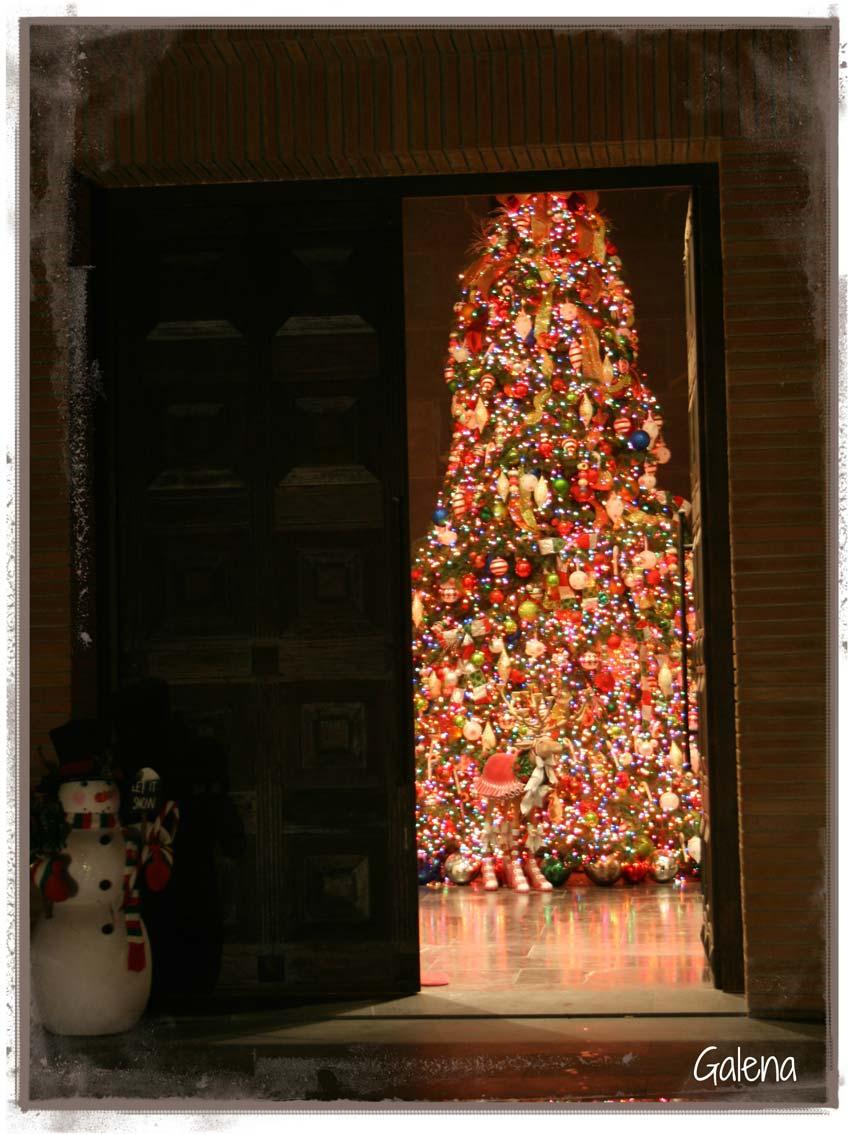 Navidad-Christmas-Decoracion-Navideña-Arbol-Navideño-Vista-Llegando