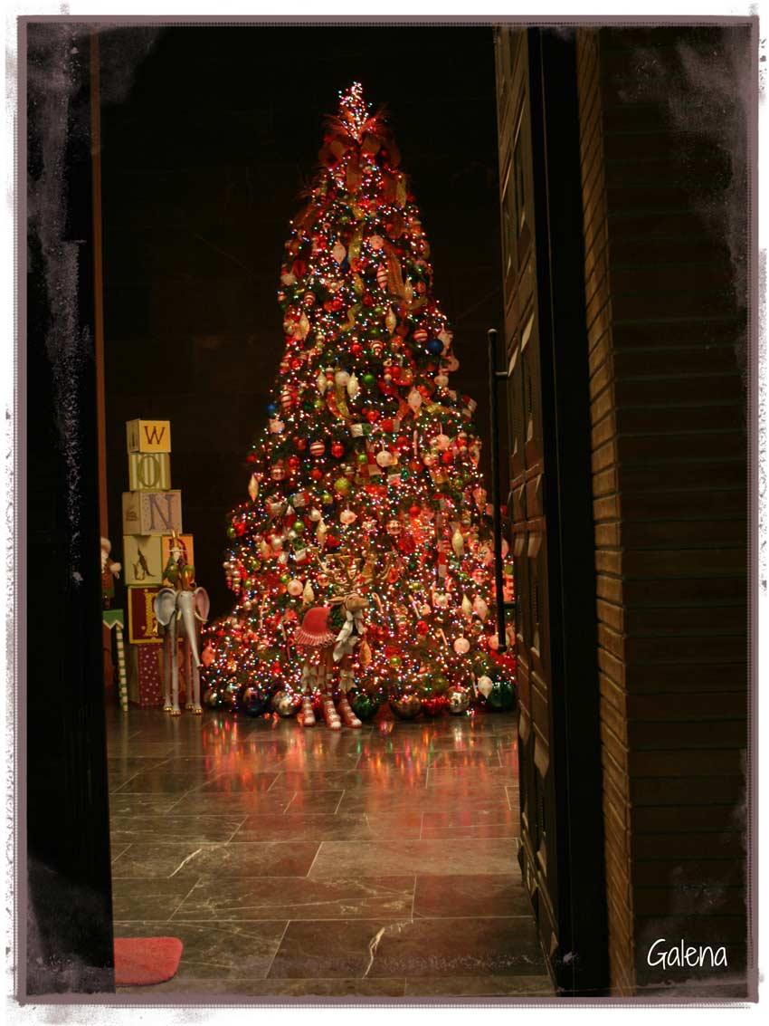 Navidad-Christmas-Decoracion-Navideña-Vista-arbol-navideño-entrada