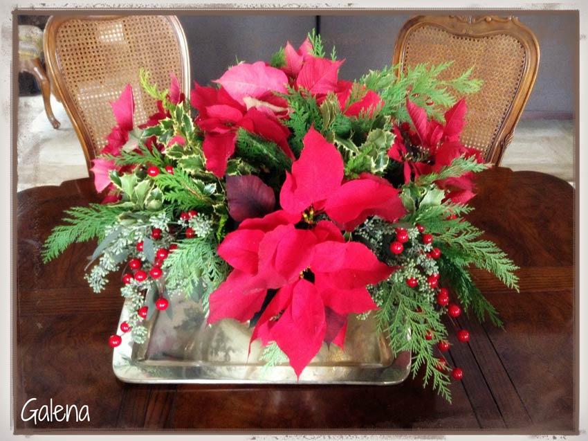 Navidad-Christmas-Nochebuenas--adorno-con-nochebuenas