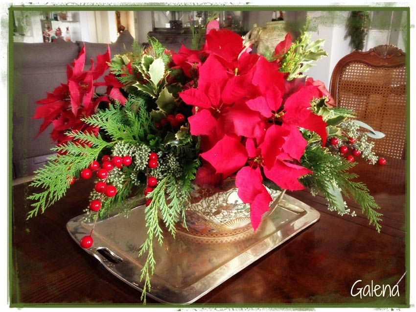 Navidad-Christmas-Nochebuenas-centro-de-mesa-con-nochebuena