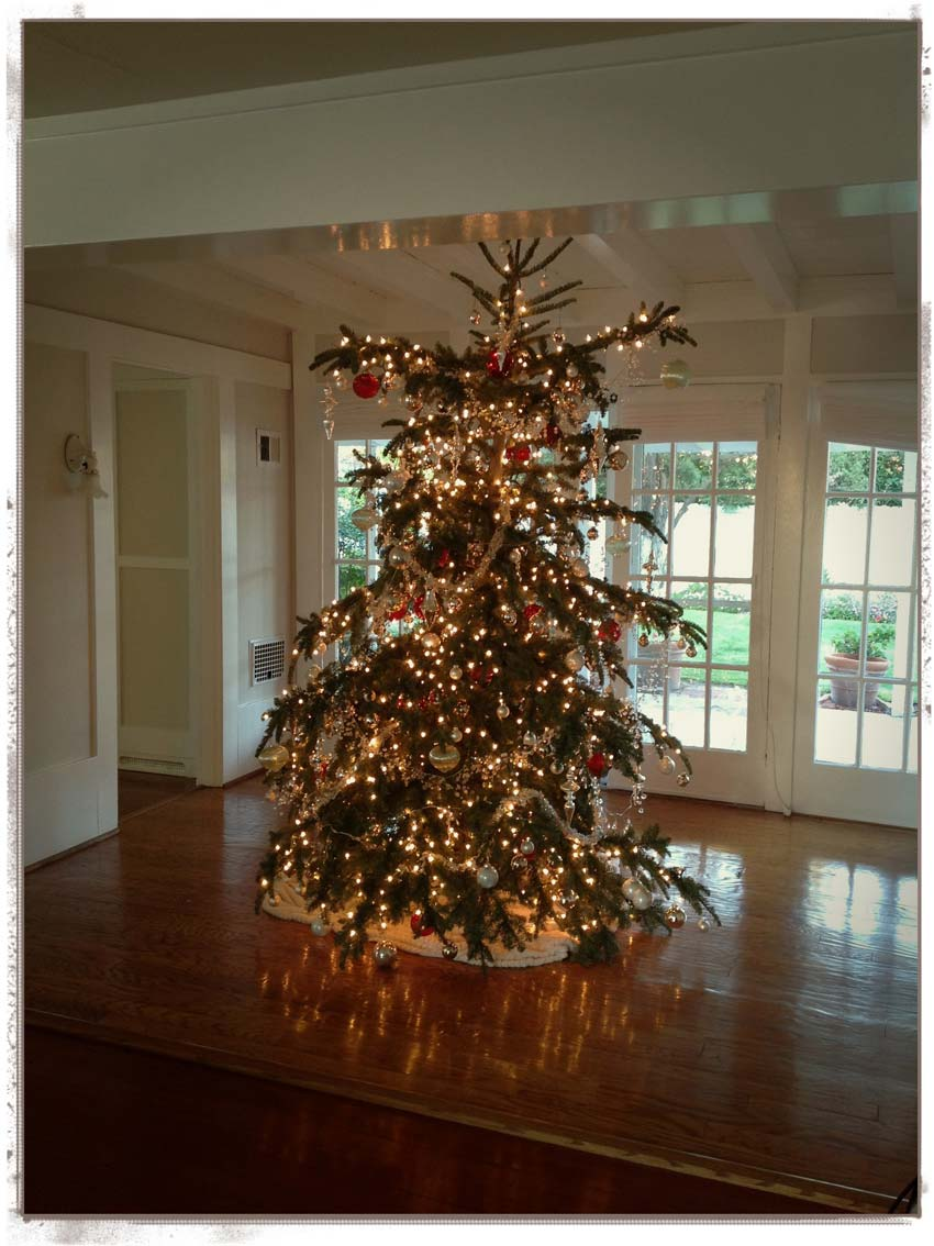 Navidad-Christmas-arbol-navideño-the-christmas-tree