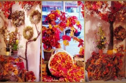 el otoño en tijuana