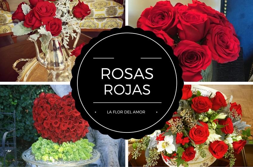 rosas rojas decorando