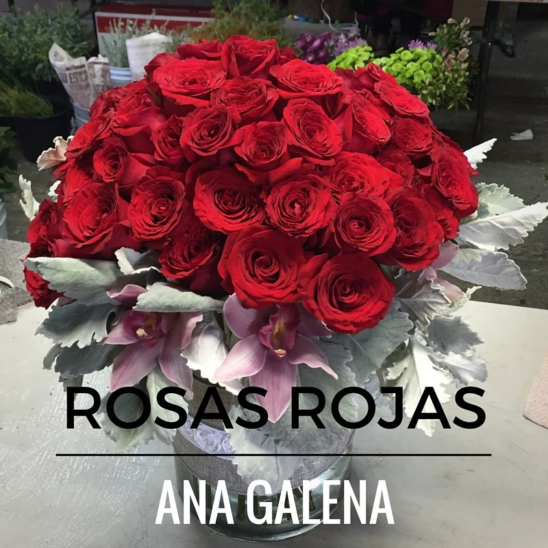 rosas rojas y el amor1