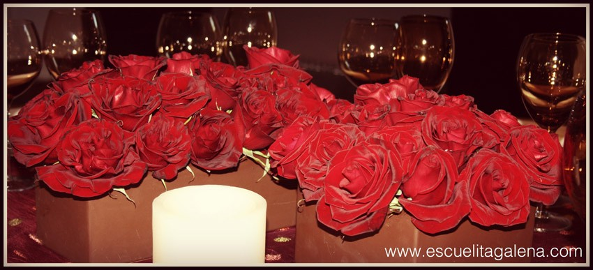stunning-red-roses
