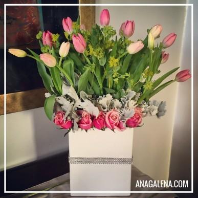 tulipan sweet