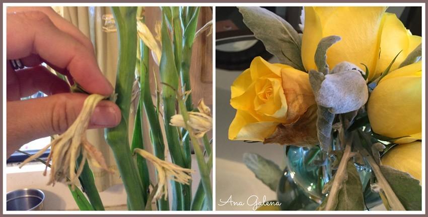 flores-marchitas