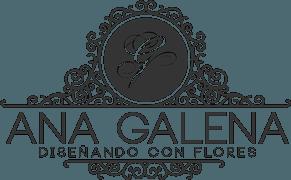 Ana-Galena-logo-web-1