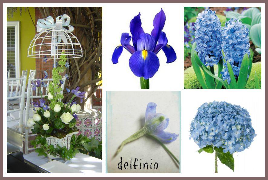 flores en color azul