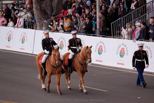 caballos-rb