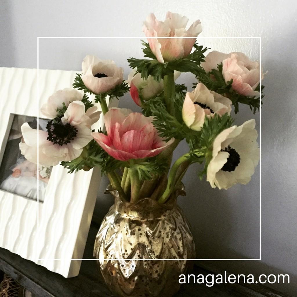 floreor con anemonas