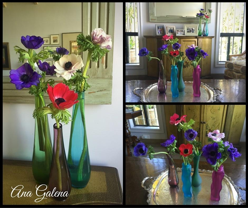 anemonas en floreros