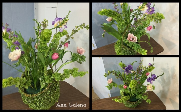 tulips-and-anemonas