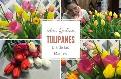 tulipanes en el día de las madres