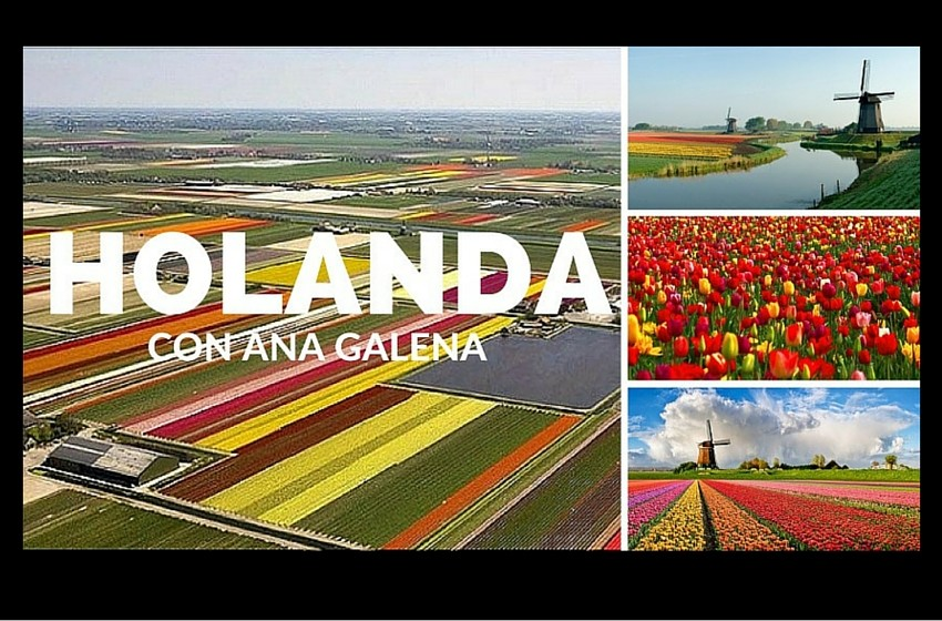 Holanda 2017