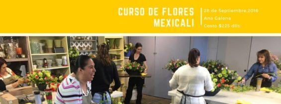 curso de flores en mexicali