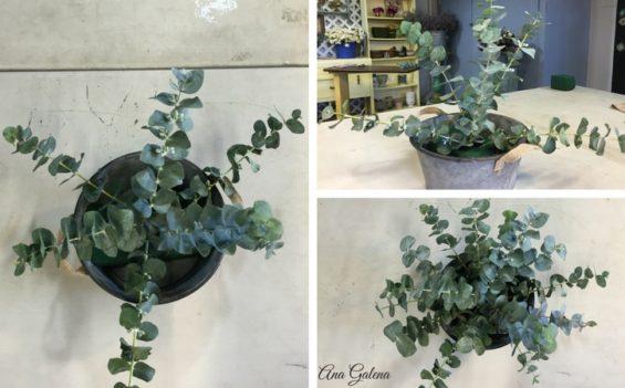 arreglo-de-flores-campirano-eucalipto