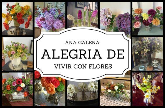 la-alegria-de-vivir-con-flores