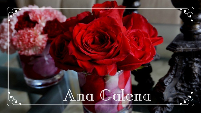 rosas-rojas-en-cilindros