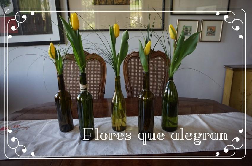 dale click en la imagen para conocer más de los tulipanes