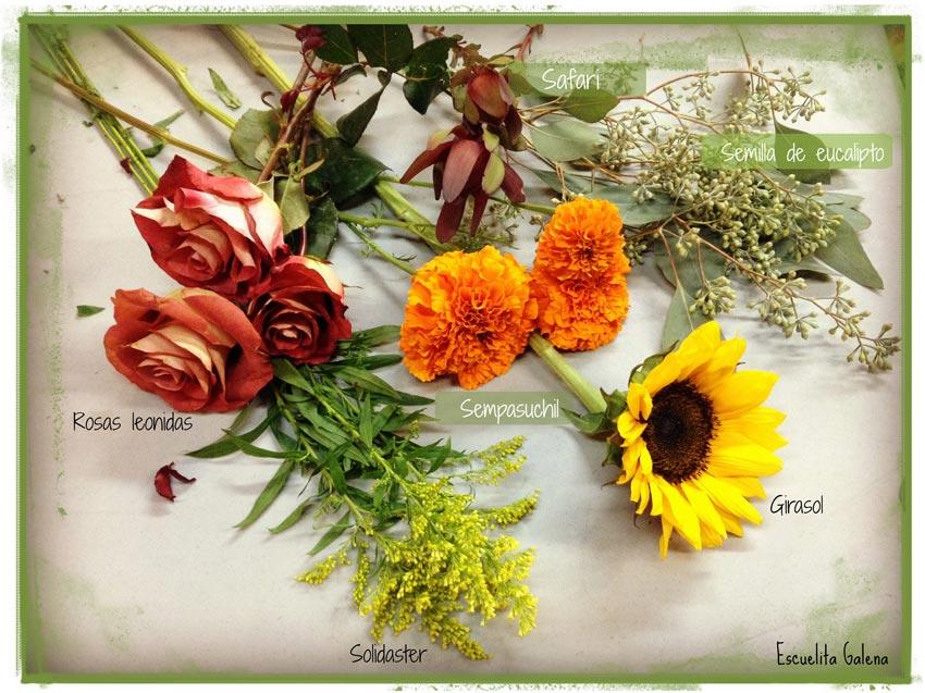 Flor-Otono