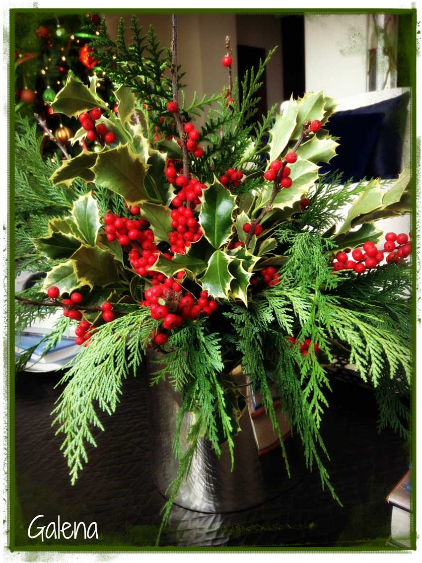 Navidad-Christmas-Decoracion-holly-1