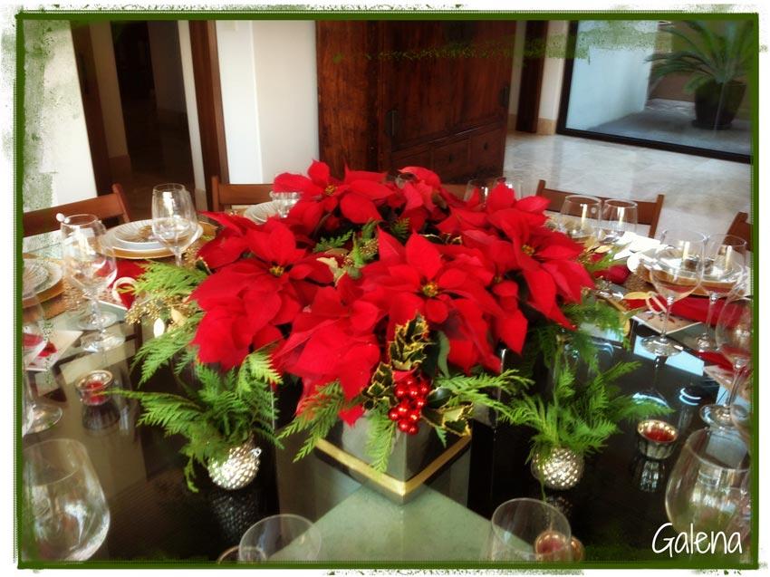 Navidad-Christmas-Nochebuenas-adorno-navideño-con-nochebuenas