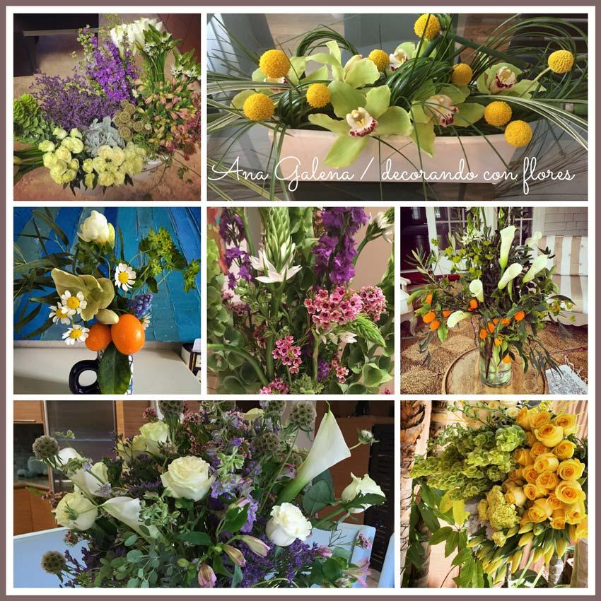 flores que alegran la vida