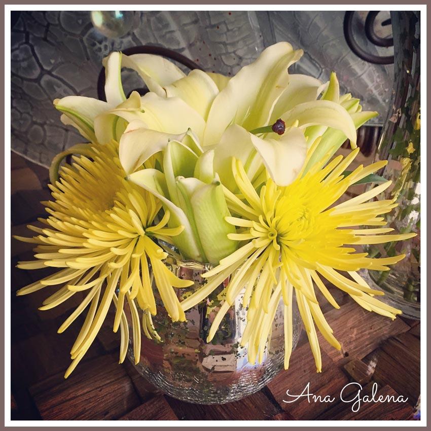 crisantemo-amarilo
