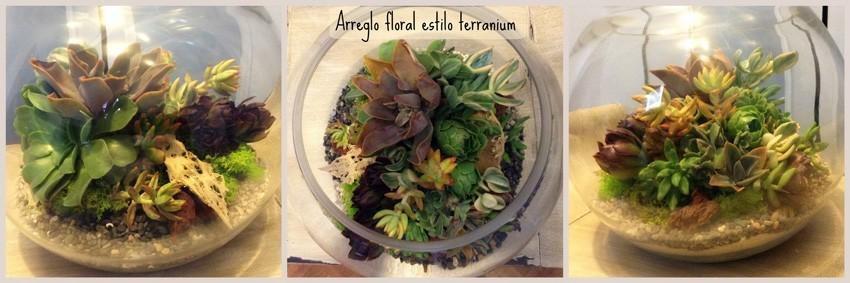 terranium-succulent
