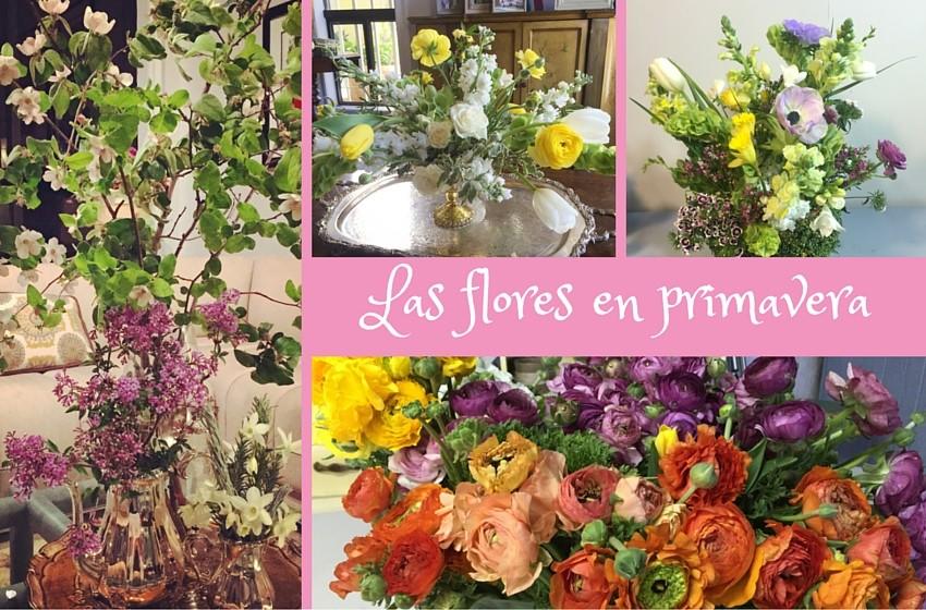Dale click aquí para conocer algunas flores que nos regala la primavera.