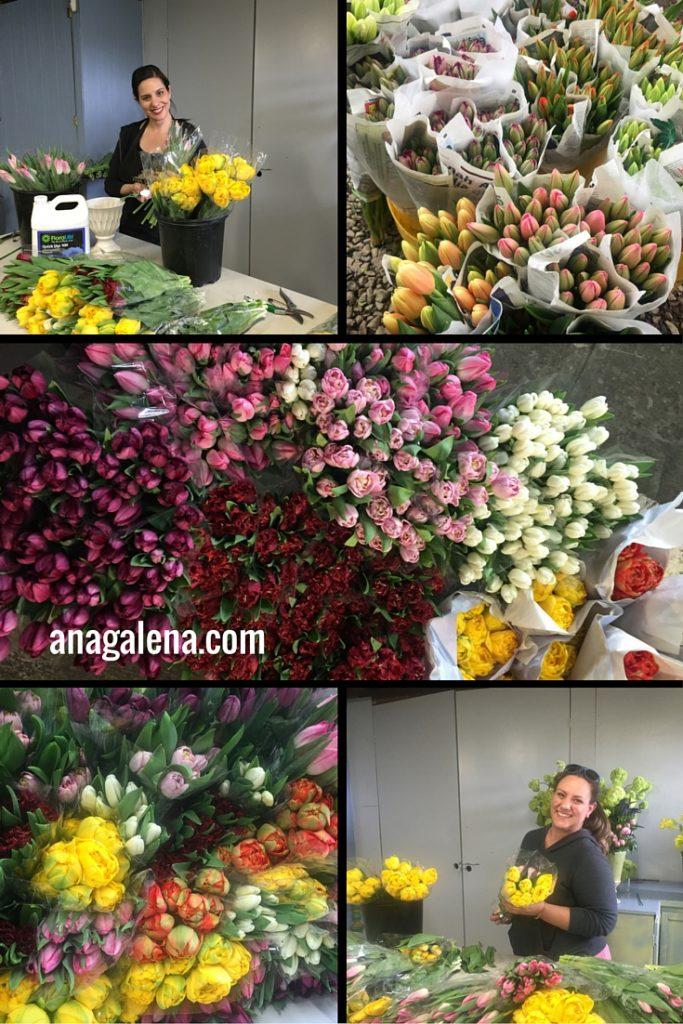 tulipanes para el dia de las madres