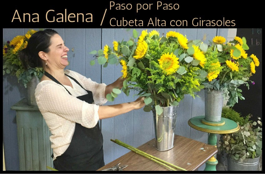 Arreglo Floral De Girasoles En Cubeta Alta Ana Galena