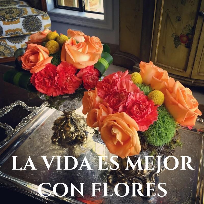 la-vida-es-mas-alegre-con-flores