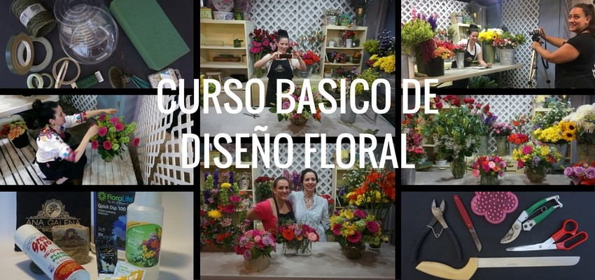 diseno-floral-online