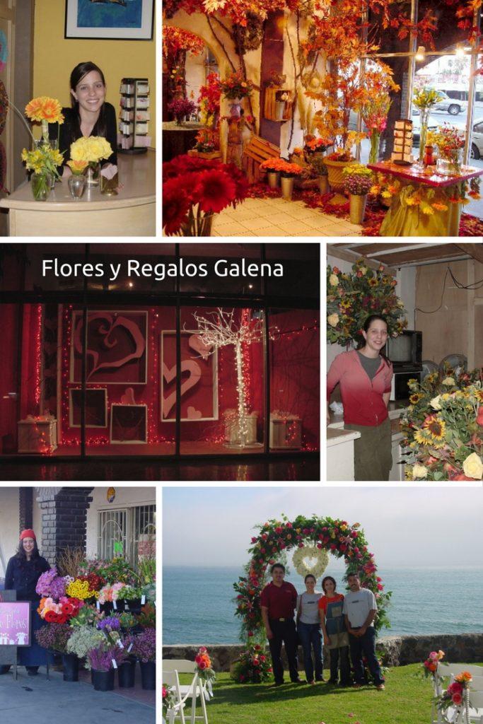 flores-y-regalos-galena
