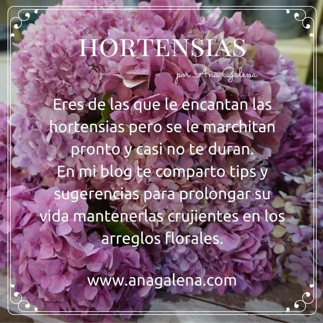 mundo-de-las-hortensias