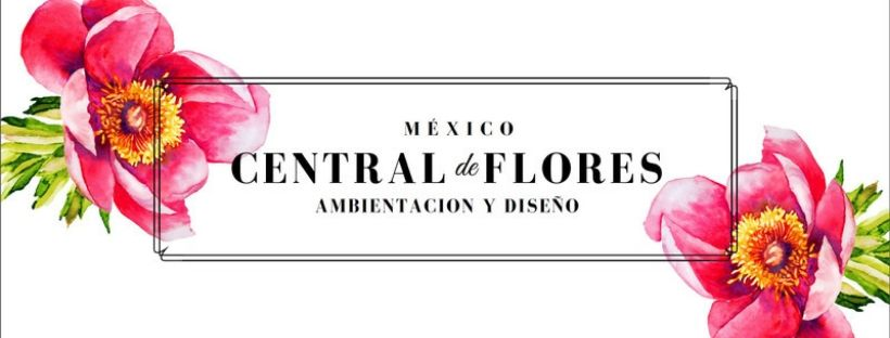Central de Flores