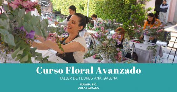 Curso de flores con Ana Galena
